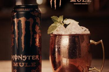 MonsterMule_RRSS_1200x1200_01